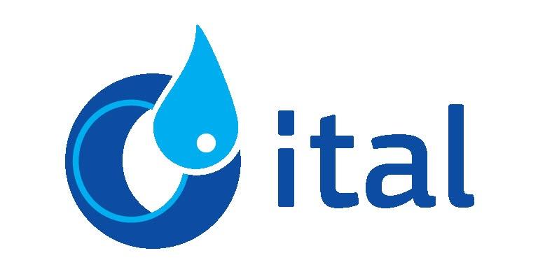 логотип ital